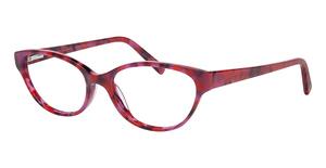 ECO 1078 Glasses