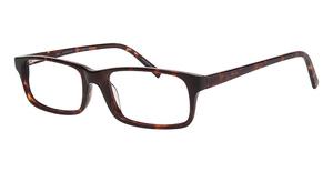 ECO 1073 Glasses