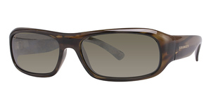 Serengeti Genova Sunglasses