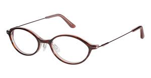 Ted Baker B850 Glasses