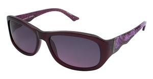 Brendel 906005 Sunglasses