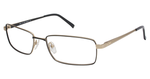 A&A Optical Indian Black/Gold