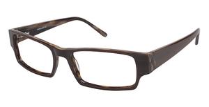 A&A Optical Moose Brown
