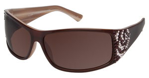 A&A Optical GL995 Brown