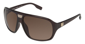 Phat Farm 5053 Dark Brown