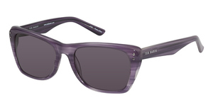 Ted Baker B500 Tesla Purple Horn