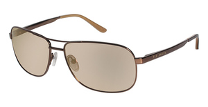 Ted Baker B496 Rockit BROWN W/FLASH