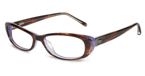 Jones New York J742 Brown