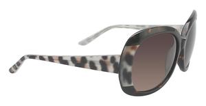 XOXO X2327 Sunglasses