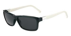 Lacoste L504S Black N Cream