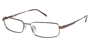 Aristar AR 6796 Brown
