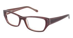 Azzaro AZ30035 Brown