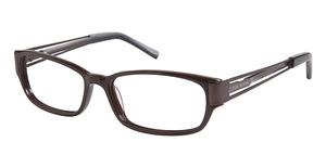 Ted Baker B856 Glasses