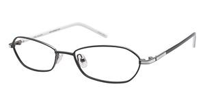 Ted Baker B918 Glasses