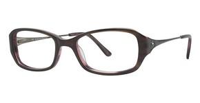 Catherine Deneuve CD-311 Glasses