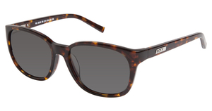 A&A Optical RS SUN 08 241 TORTOISE
