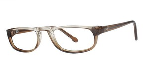 Modern Optical Overview Brown