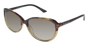 Brendel 906028 Sunglasses