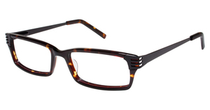 A&A Optical Elm St Tortoise