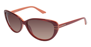 Brendel 906023 Sunglasses
