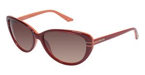 Brendel 906023 Sunglasses