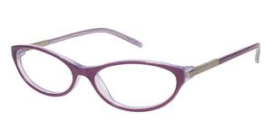 Ted Baker B707 Glasses