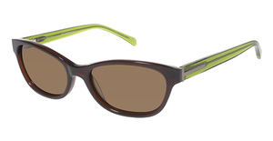 Ted Baker B554 Sunglasses