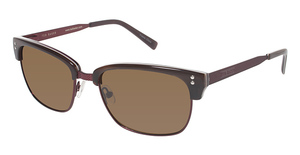 Ted Baker B603 Brown/Raspberry