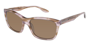 Ted Baker B553 Sunglasses