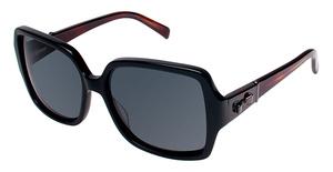Ted Baker B560 Glasses