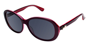 Ted Baker B559 Sunglasses