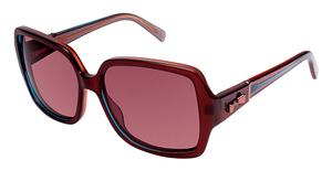 Ted Baker B560 Eyeglasses