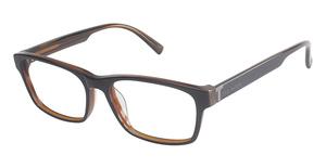 Ted Baker B864 Glasses