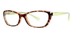 Modern Optical A341 Eyeglasses
