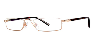 Modern Optical BIG Business Gold/Tortoise