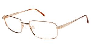 Charmant Titanium TI 10782 Eyeglasses