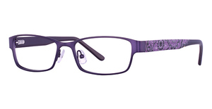 Wildflower Fireweed Glasses