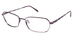 Aristar AR 16333 Purple