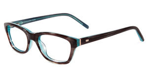 Jones New York Petite J221 Brown/Blue