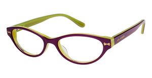 Ted Baker B906 Glasses