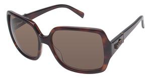 Ted Baker B560 Prescription Glasses