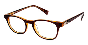 Crush 853006 Brown