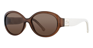 Lacoste L509S Brown N Cream