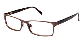 A&A Optical Woodward Ave Brown