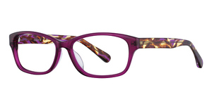 Zimco Harve Benard 614 C1-Purple/Berry
