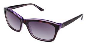 Brendel 906036 Sunglasses