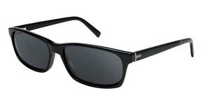 Ted Baker B606 Sunglasses