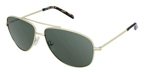 Ted Baker B610 Sunglasses