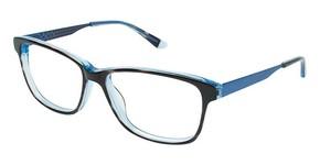 Humphrey's 581012 TORTOISE W/BLUE