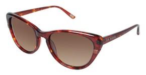 Ted Baker B570 Sunglasses